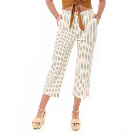 ropa-pantalonbotaancha-249424-9645-tierra_1