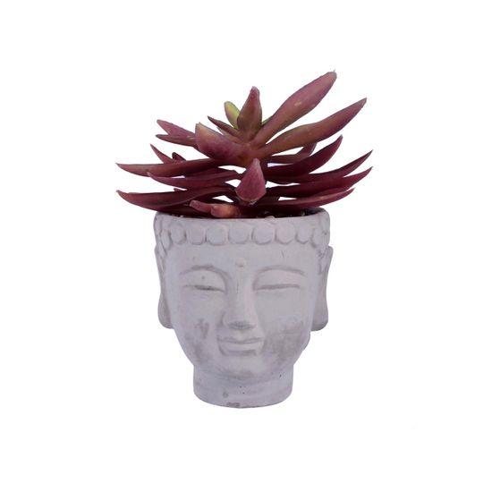 hogar-accesorios-plantaconpote-255984-9510-cafeclaro_1