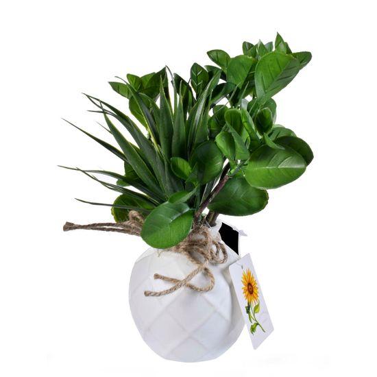 hogar-accesorios-plantaconpote-255995-8960-verdehoja_1